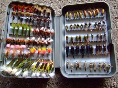 120 Best Sellers In A R Amp F Fly Box Trout Flies Australia