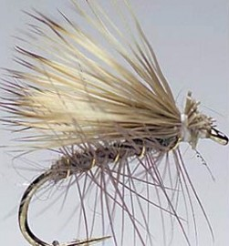 Hairwing Elk Hair Caddis Olive