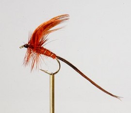 Brown Drake Mayfly