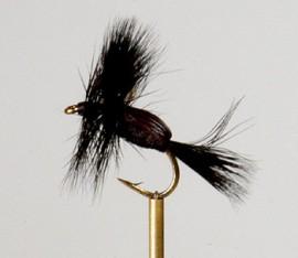 Black Humpy