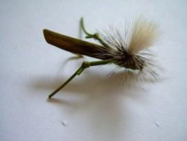 Parachute Olive Hopper Rubber Legs