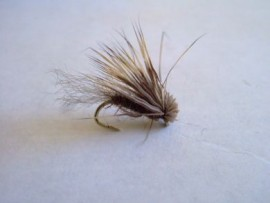 Swiftwater Dun/Caddis