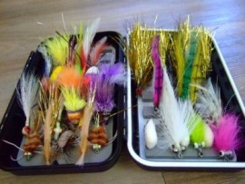 THE WEIPA SALTWATER FLY COLLECTION