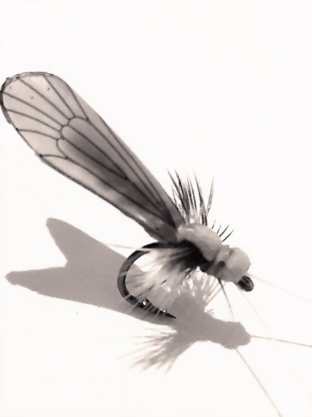 8 adult caddis collection realistic foam trout flies for Online fly fishing store