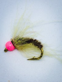 The Camel Australia's Best of the latest fly trends