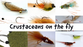 Crustaceans On The Fly