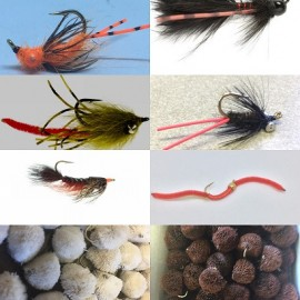 Carp On The Fly - An Essential Collection Of 20 patterns