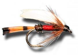 Royal Coachman Wet Fly