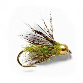 Bead Head Caddis Flashback Olive