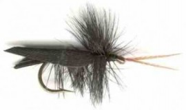 Black Tent Wing caddis