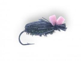 Black Crow Beetle