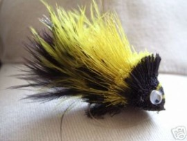 Dahlberg Diver Black/Yellow