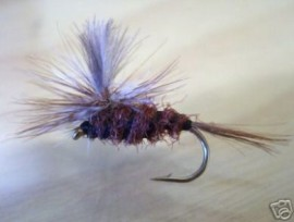 Emerger Natural CDC