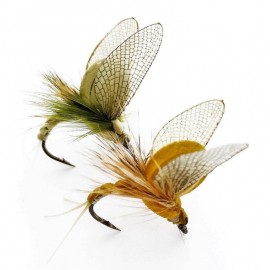 Realistic Mayfly Emergers