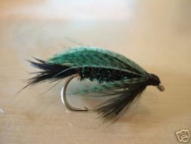 Miss Tasmania Wet Fly