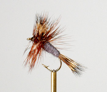 Adams wulff trout flies australia fly fishing products for Online fly fishing store