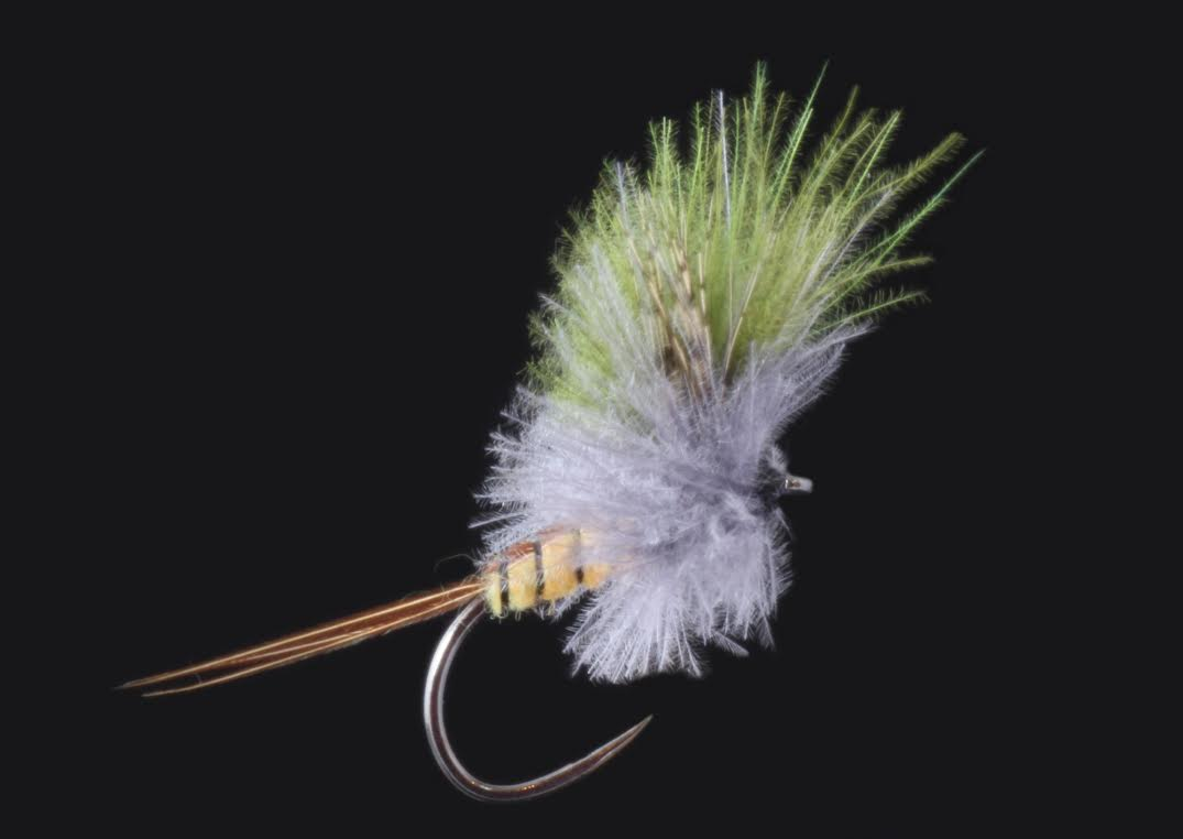 Orange olive upright cdc trout flies australia fly for Online fly fishing store