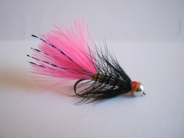 Shrek rainbow bugger bead head trout flies australia fly for Online fly fishing store
